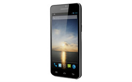 Newland Thimfone N5000 Android Term.(W,B,3G,2D)